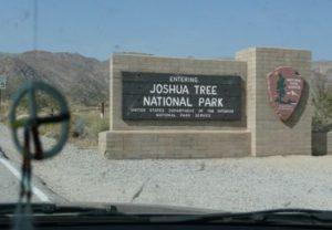 Joshua_tree_sign_2 - Returning from Joshua Tree