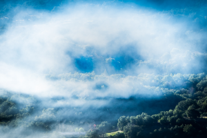 ri-mists